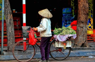 Hanoi (9)